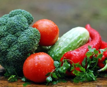 vegetable farming industry